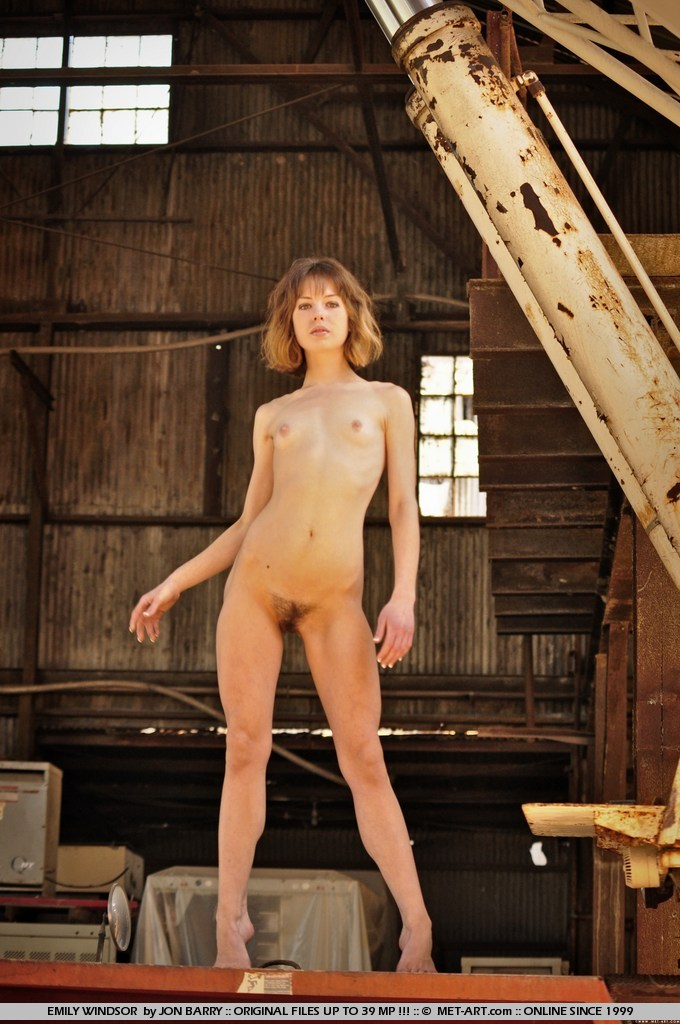 Met Art Model Emily Windsor With Tiny Tits Posing Nude On Farm